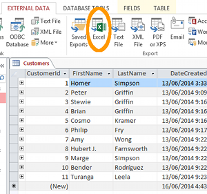 Screenshot of the Excel export button in Access 2013.