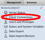 Screenshot of the Client Connections button.