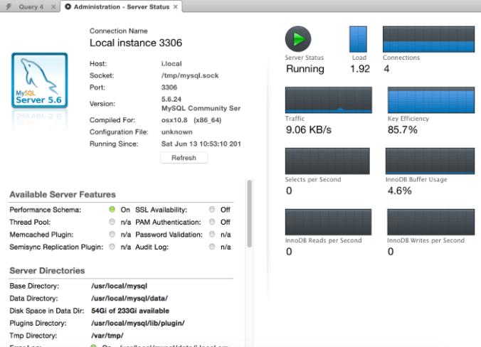 Screenshot of the Server Status screen in MySQL Workbench